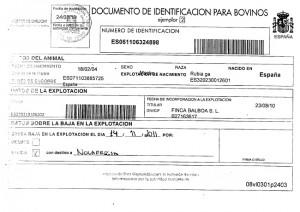 Documento de Identificación para bovinos