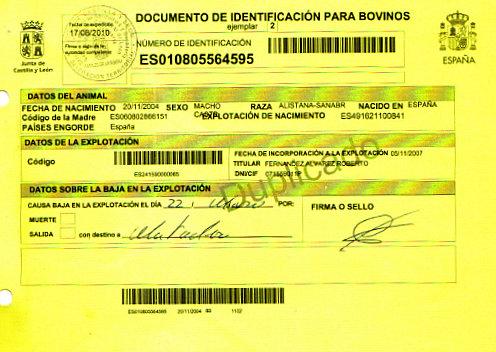 Certificado del buey sacrificado