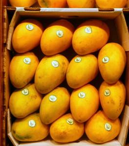 Mangas variedad Ataulfo en Frutas Charito
