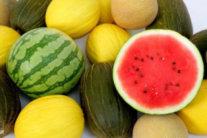 Melones y sandías en Frutas Charito
