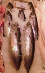 Melvas de primera calidad en Pescadería Ernesto Prieto