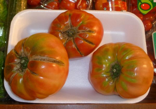 Tomates rosa de Huesca