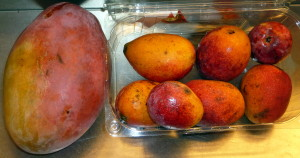 Mangos enanos