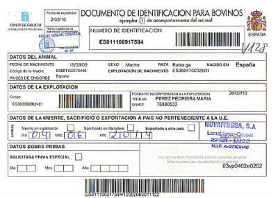 Documentación de buey gallego de Carnes Cesáreo Gómez