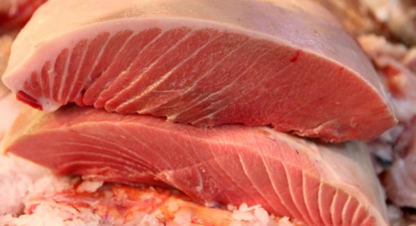Atún rojo, el rey de la cocina japonesa