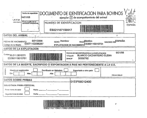 Documentación de la supervaca de Carnes Cesáreo Gómez