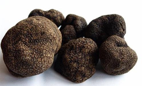 Cotizadas trufas negras en Frutas Charito