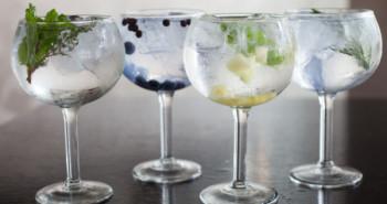 Variedades de gin tonic