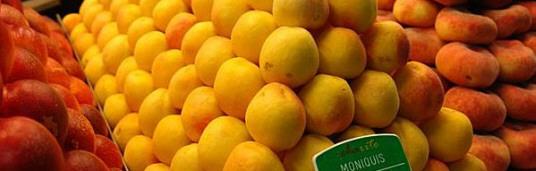 Albaricoques variedad moniquí