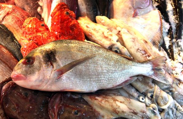 Dorada salvaje de Pescadería Ernesto Prieto