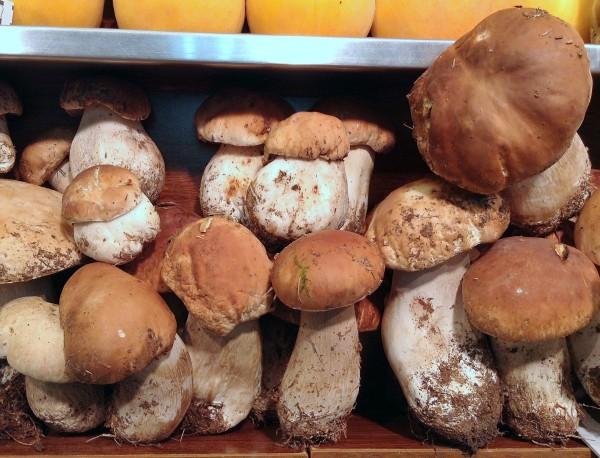 Funghi porcini en Frutas Charito