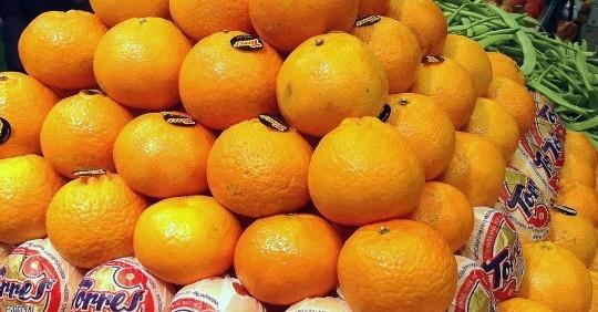 Clementinas de Frutas Charito