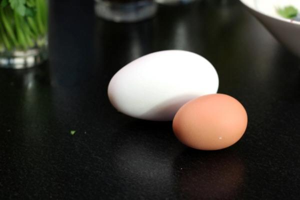 Tamaño de los huevos de oca