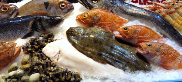 Pescados y mariscos fortalecen nuestra salud