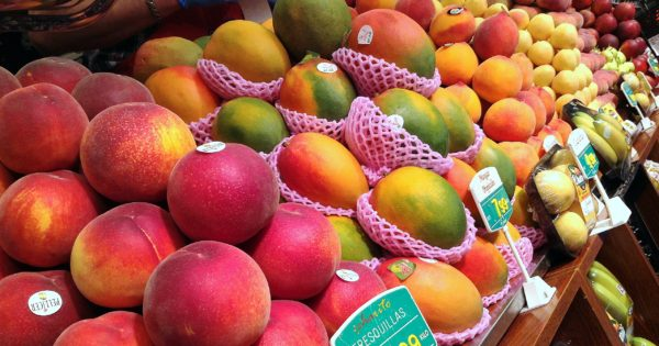 Fruta gourmet