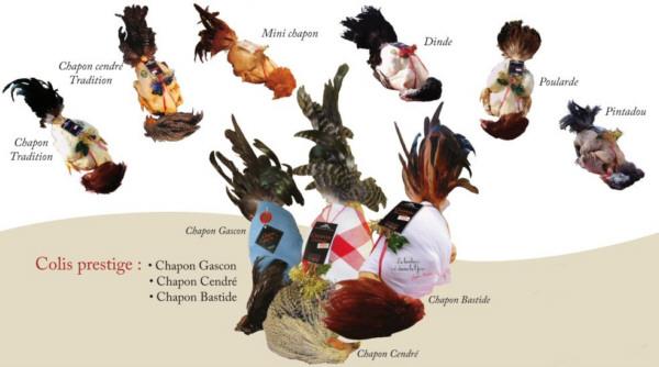 Aves gourmet de la región de Gers