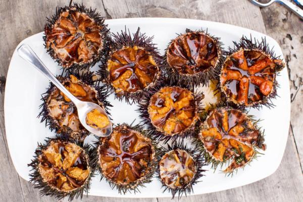 Erizos de mar en el Mercado de Chamartín
