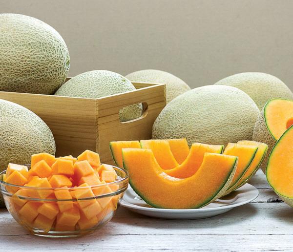 Melones de la variedad cantalupo